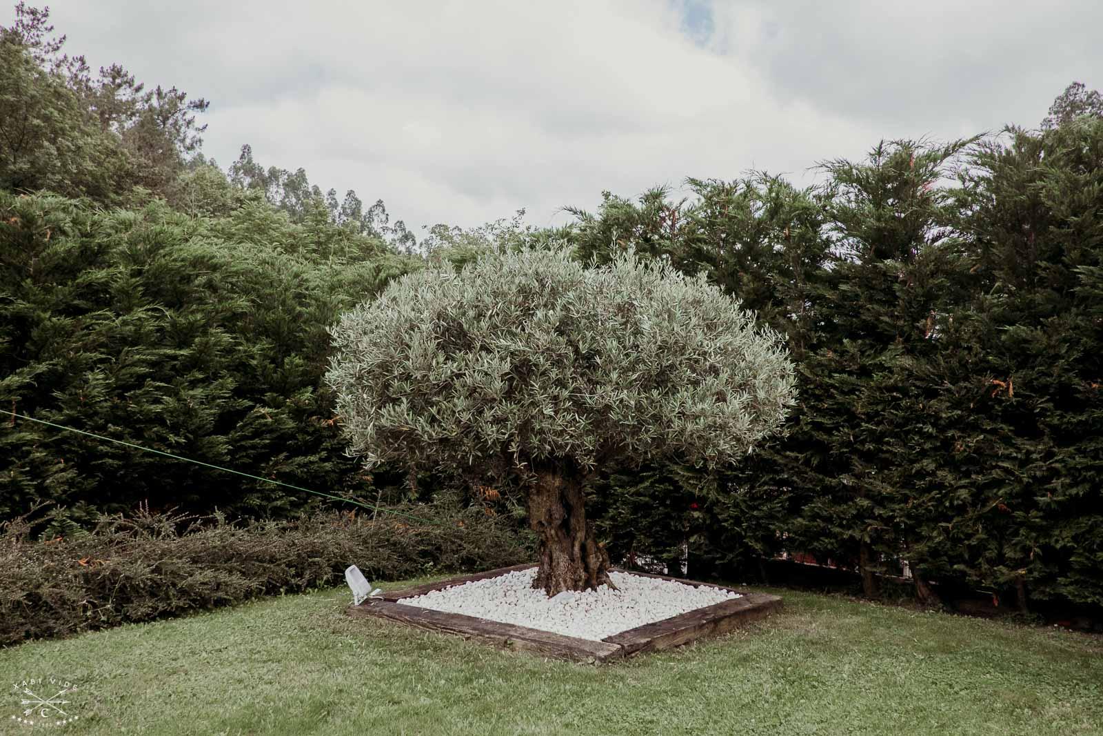 fotografo de bodas en bilbao-12.1